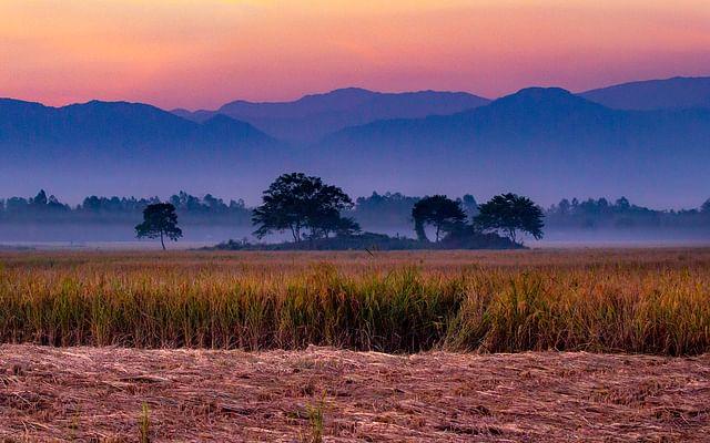 হেমন্তের বিকেলে নেপালের পাহাড় সারি। ২০১৭ সালের ১৫ নভেম্বর তেঁতুলিয়ার জুগিগছ এলাকা থেকে তোলা