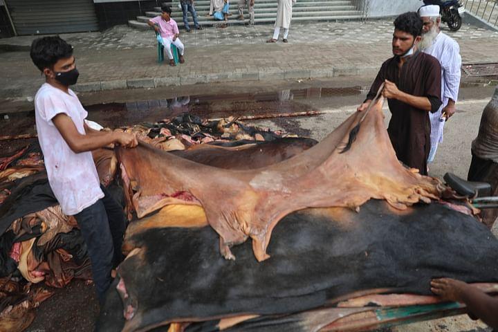চামড়া সংগ্রহে ব্যস্ত মৌসুমি চামড়া ব্যবসায়ীরা। সায়েন্সল্যাব, ঢাকা, ২১ জুলাই।