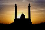 আত-তুফায়ল ইবনে আমর আদ-দাউসির ইসলাম গ্রহণ