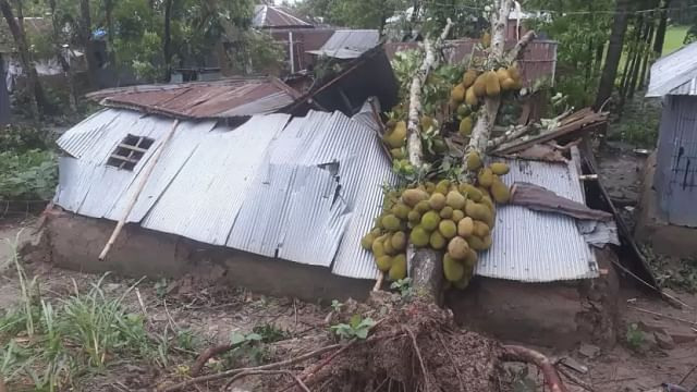 A house is damaged as tree falls on it Chechua area in Kushtia.